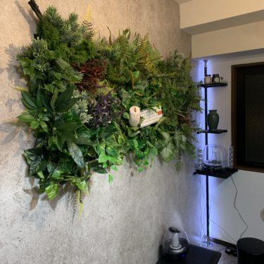 賃貸リビングDIY、装飾追加(壁面緑化、イレクターパイプラック)|装飾追加編【結果報告】